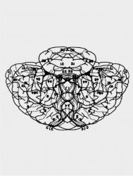 Engram Series (11)