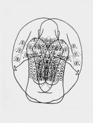 Engram Series (4)