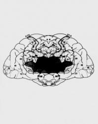 Engram Series (6)