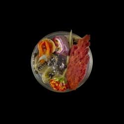 Vanitas in a Petri Dish (22)