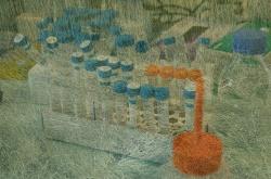 Laboratory Life (Orange)