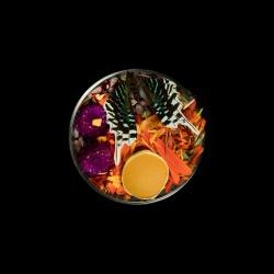 Vanitas (in a Petri dish) 38