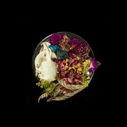 Vanitas (in a Petri dish) 35