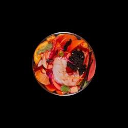 Vanitas (in a Petri dish) 49