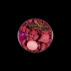 Vanitas (in a Petri dish) 48