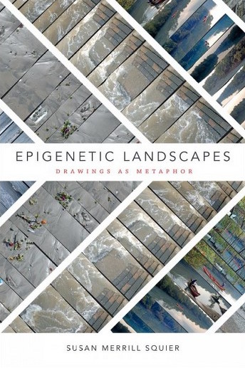 Epigenetic Landscapes Drawings as Metaphor