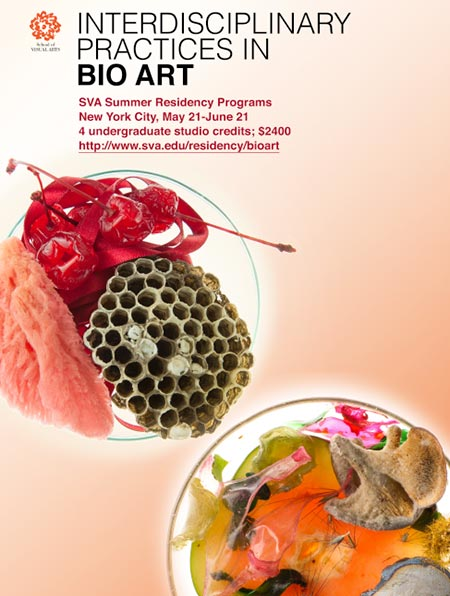 Interdisciplinary Practices in Bio Art